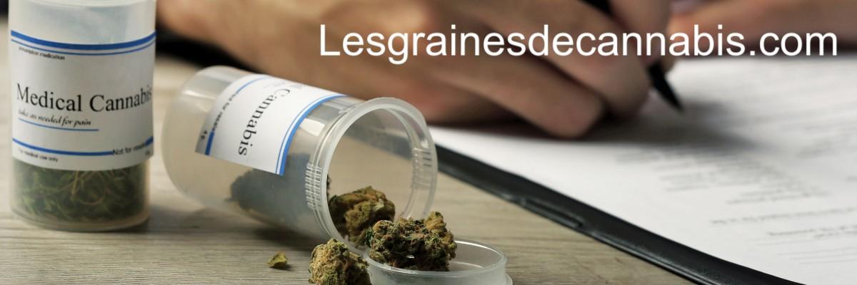 lesgrainesdecannabis.com